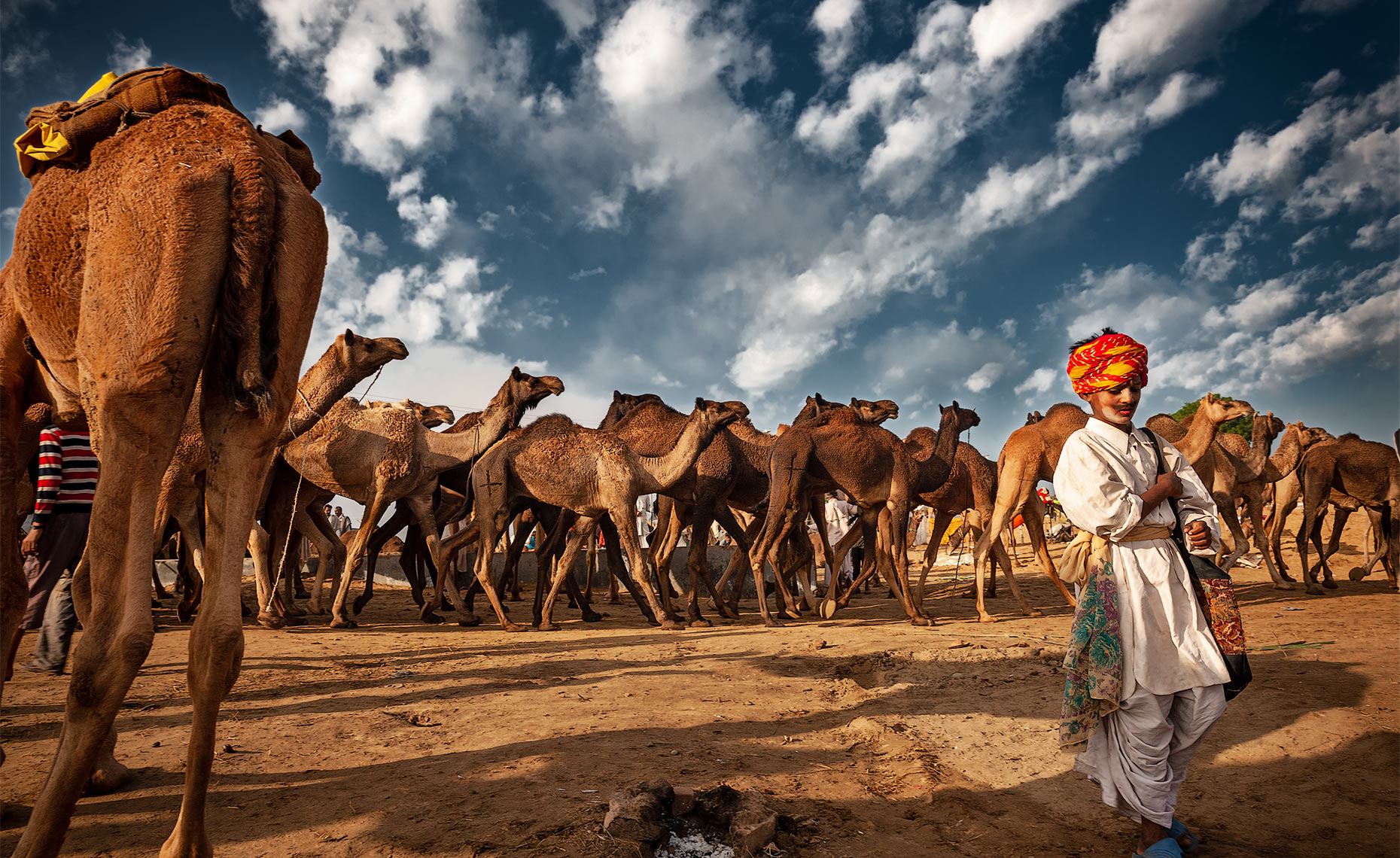 pushkar-camel-fair-rajastan-india